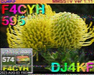 F4CYH image#2