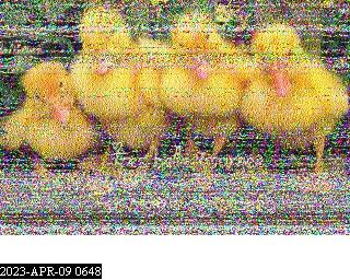 History #24 de G8IC