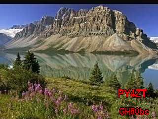 History #5 de PA11246